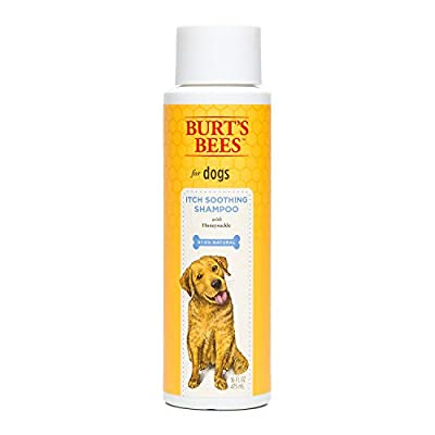 Burt's Bees Natural Shampoo for Dogs | Made with The Finest Natural Ingredients | Best Natural Dog Shampoo, Safe for All Sizes & Breeds