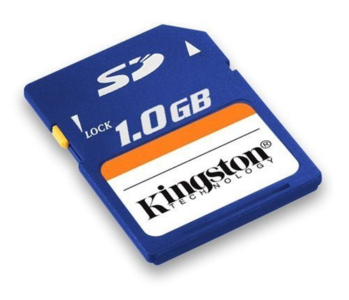 Kingston 1 GB Secure Digital Flash Card ( SD/1GB ) (Retail Package)