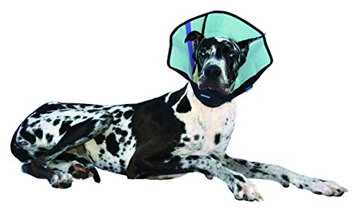 Calm Paws Dog Caring Collar with Calming, Large