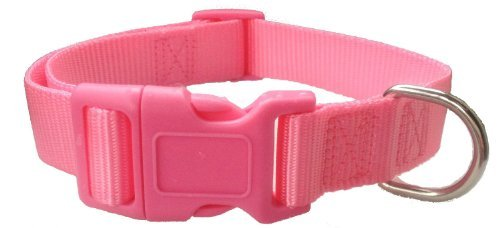 Cute Fasion Pet Dog Collar and Leash for Girl Dogs Nylon Dog Collar 3/4-Inch Medium (M) Size, Hot Pink