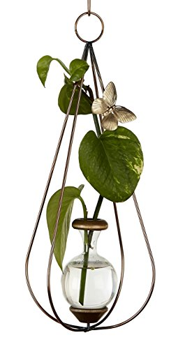 Brass Butterfly Hanging (The Brass Butterfly Hanging Dimensional Teardrop Planters)