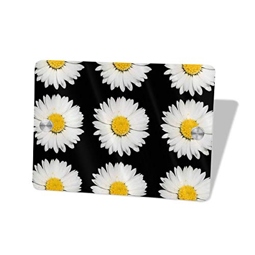 Hucuery Commission Nine Common Daisies Isolated 5.57.5 in