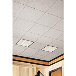 Acoustical Ceiling Tile 24