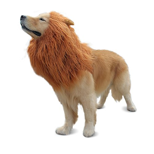 RWM Lion Mane for Dog - Halloween Dog Costume Large Size - Hilarious Realistic & Funny Majestic Looking Hoods with Ear and Tails - Great Pet Gift Choice for Christmas,Pet Birthday Party ()