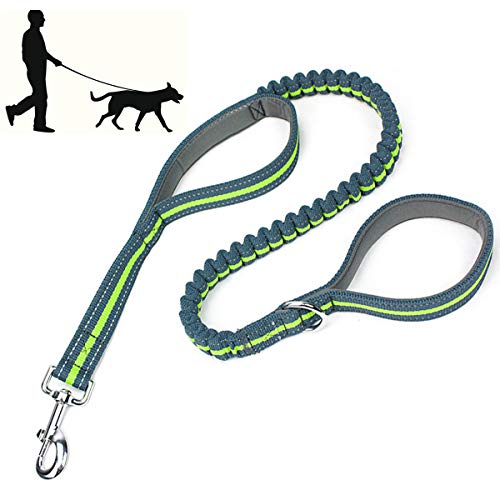 LEONEBEBE Bungee Leash with Traffic Handle Heavy Duty Training Leash with Double Padded Handles Reflective Dog Leash 4 FT Long Perfect for Small Medium Large Dogs Walking Hiking Green