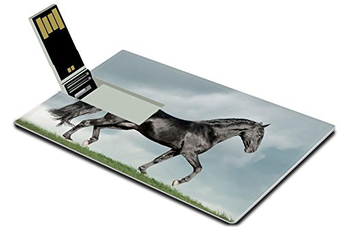 Cruzer Freedom Usb (Luxlady 32GB USB Flash Drive 2.0 Memory Stick Credit Card Size white arab horse runs gallop in summer time IMAGE 35816153)