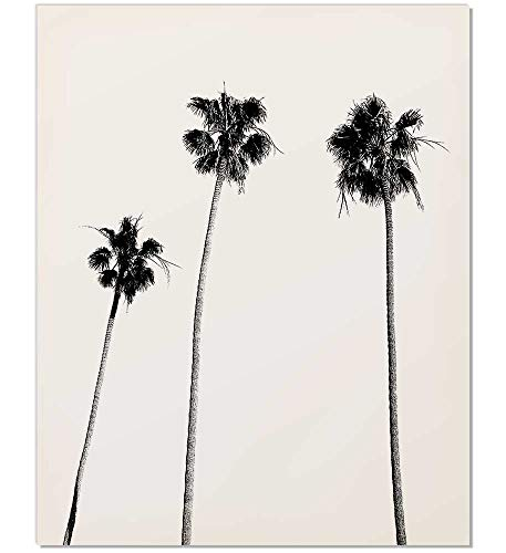Black White Landscape Photographs - Palm Tree Print, Palm Print, Palm Tree Photography, Black and White, Palm, Palm Tree, Tropical Wall Art, Tropical Decor, Wall Decor, Black and White Palm Tree, Black Palm Tree, Minimalist, 8x10
