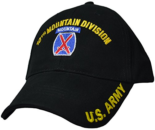 10th Mountain Division Low Profile Cap