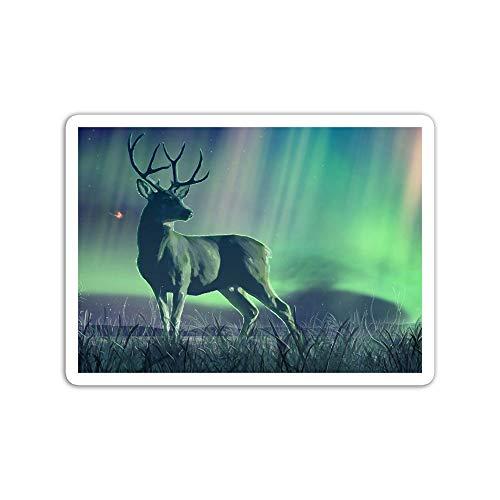 gordonstore Sticker Creature Animal Secret Fairy Animals Fauna (3