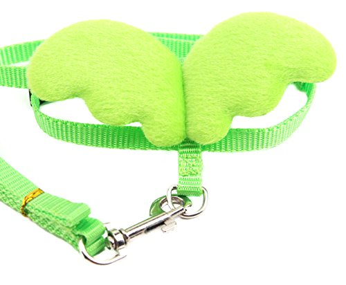 Small Pet Animal Harness and Leash Angel Wings for Baby Ferret Chinchilla Mouse Lizard Chipmunk Gerbil Degu Rat reptile gecko (Green) by FunPetLife