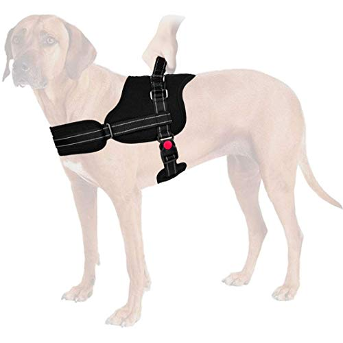 xl dog harness - 8
