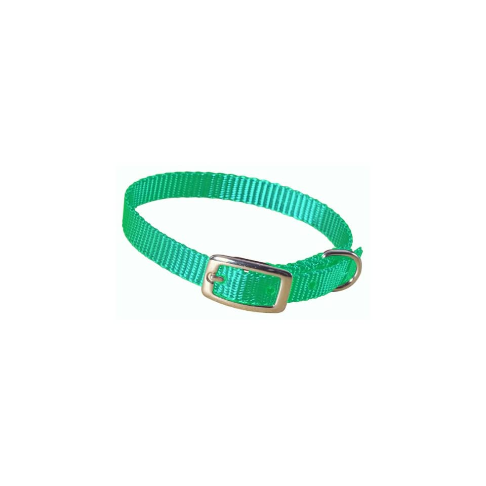 Hamilton 3/8 Single Thick Nylon Deluxe Dog Collar, 14, Green
