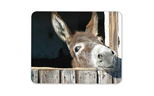 Cheeky Donkey Mouse Pad - Horse Kids Cute Animal Mousepad Mouse Mat Gift Computer -8260