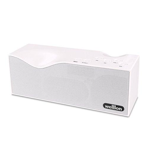 Welllon Bluetooth Speakers, Dual Loudspeaker Porta...