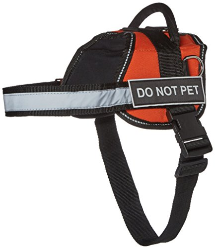 Dean & Tyler Works Please Give Me Space Do Not Pet Harness, Small, Fits Girth Size: 25 to 34-Inch, Orange/Black by Dean & Tyler