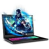 "SAGER NP6873 17.3"" FHD IPS Gaming Laptop, Intel Core i7-8750H, NVIDIA GTX 1050Ti 4GB DDR5, 16GB RAM, 250GB M.2 SSD + 1TB HDD, Windows 10 Home"