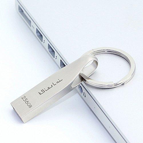 256 Flash Drives - 256GB USB 2.0 Flash memory Drive- Waterproof Design (fc-256)