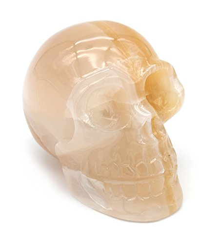 "Decorative Amber Onyx Aragonite Skull Figure, 3.5"" Tall, 4"" Long, 2.5"" Wide (1.8lb), Carved from Real North American Amber Onyx Aragonite - The Artisan Mined Series by hBAR"
