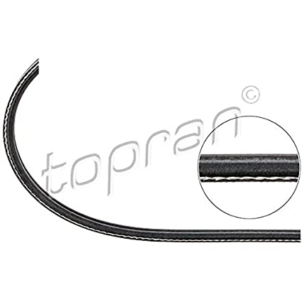 Amazon.com: TP V-Ribbed cinturón para Seat Toledo VW Golf ...