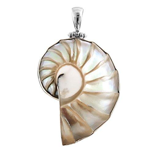"Ridged Nautilus Shell 925 Sterling Silver Pendant, 2 3/8"""