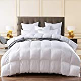 THREE GEESE Twin Size Goose Down Feather Comforter Twin Duvet Insert All Seasons Stripes White Hypo-allergenic 600 Thread Count 100% Cotton Shell Down Proof with 8 Corner Tabs (Twin)