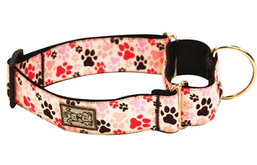 RC Pet Products 1-1/2-Inch All Webbing Martingale Dog Collar, Medium, Pitter Patter Pink, My Pet Supplies