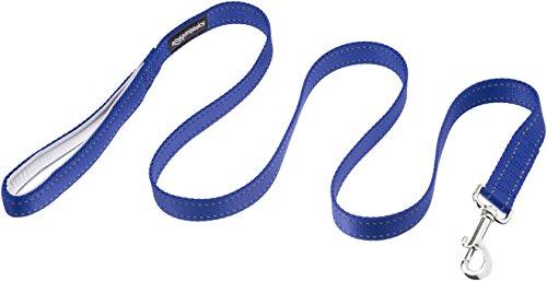 AmazonBasics Padded Handle Dog Leash - 4-Foot, Blue
