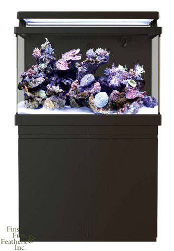 Red Sea MAX S-Series 400 Plug & Play Coral Reef System 110 (Red Sea Max Reef Aquarium)