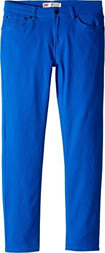 Levi's Boys' Big 510 Skinny Fit Jeans, Princess Blue, ()