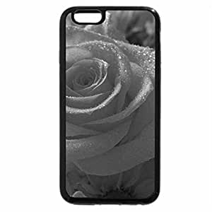 iPhone 6S Plus Case, iPhone 6 Plus Case (Black & White) - Bold Orange Rose