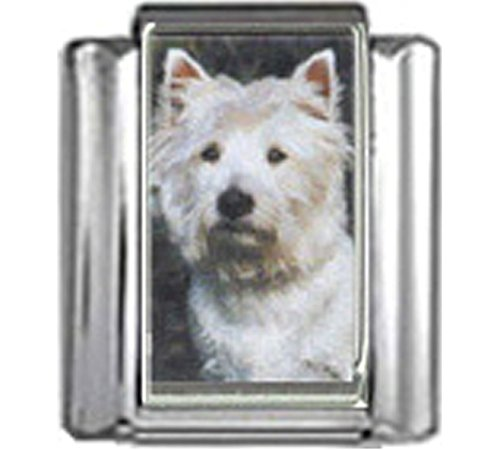 Stylysh Charms WEST Highland White Terrier Dog Photo Italian 9mm Link DG395