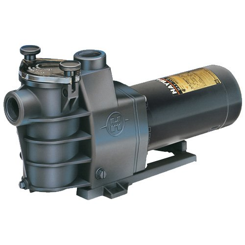Hayward SP2810X152 1-1/2 HP Standard Efficient Maximum Rated Dual Speed Max-Flo Pool and Spa Pump