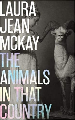 The Animals in That Country: Amazon.co.uk: Jean McKay, Laura:  9781912854523: Books