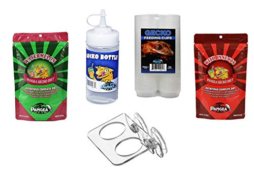 Pangea Essential Gecko Feeding Kit
