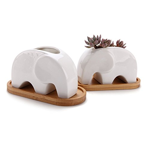 T4U Succulent Plant Pot Cactus Ceramic Planter with Bamboo Tray Pack of 2-4.8″ Elephant, Small Container White Animal Window Box Decorative Ornament Office Desktop Wedding Birthday