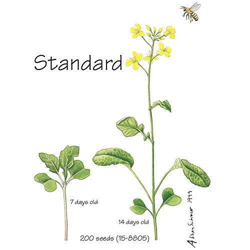 Wisconsin Fast Plants Standard Seed, Pack of 50