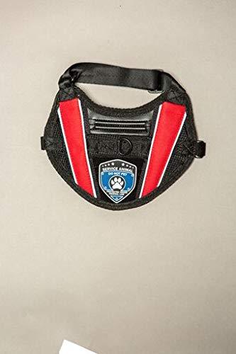 Amazoncom Sa Shop Service Dog Vest Xxxl 40 4295 Lbs Pet