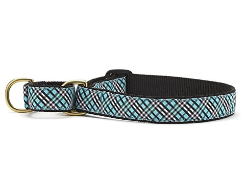 Large Up Country Aqua Plaid Martingale Dog Collar