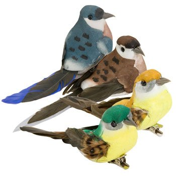 Full case of 36 feathered colorful Floral Garden Decorative Birds 6 different colors (36, Standard) by Floral Garden