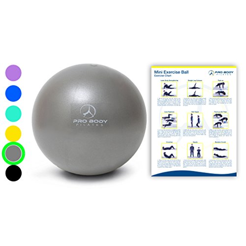 Mini Exercise Ball - 9 Inch Small Bender Ball for Stability, Barre, Pilates, Yoga, Core Training and Physical Therapy (Silver) ()
