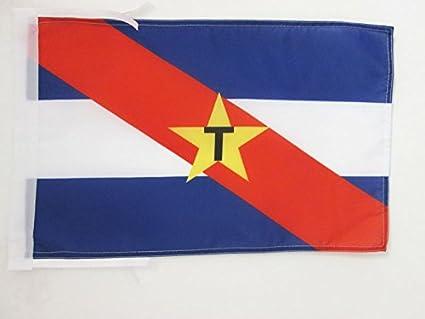 BANDERA del MOVIMIENTO DE LIBERACIÓN NACIONAL-TUPAMAROS DE URUGUAY 45x30cm - BANDERINA MLN-T