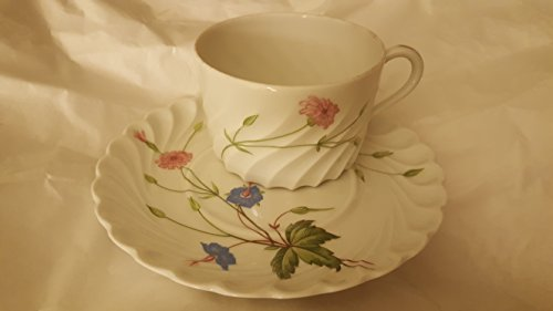 Exquisite limoges cup and saucer
