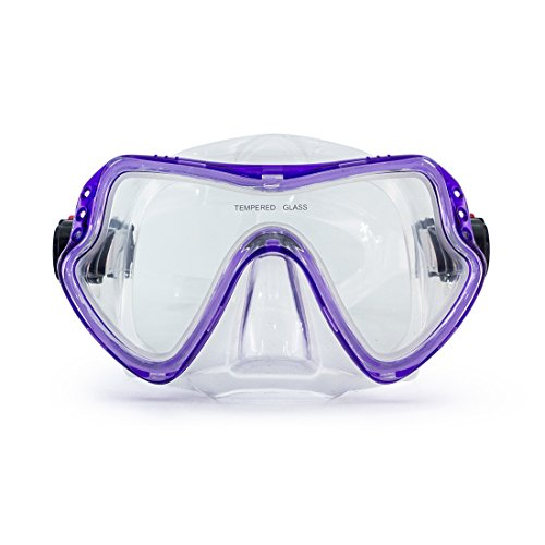 Scuba Mask Diving Mask Free Diving Glasses Snorkeling Mask Snorkel Goggles with Tempered Anti-Fog Lens Glasses with Silicone Skirt Soft Flexible Silicone Strap for Adult Men Women Boys Girls (Purple)