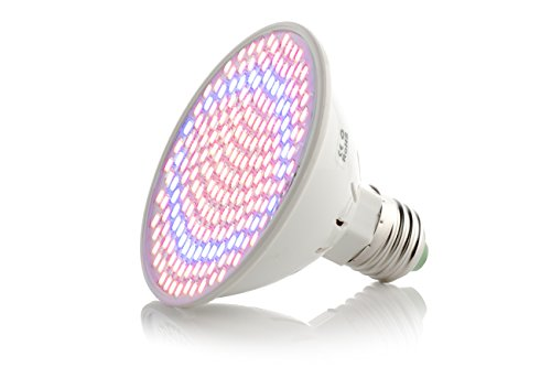 Best Led Grow Light For Budding