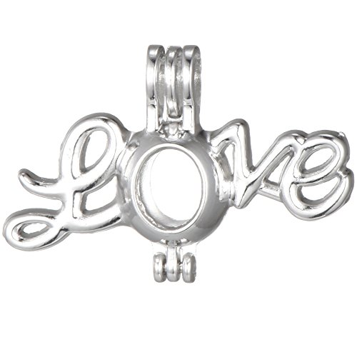 10pcs Stainless Steel Tones Alloy Love Bead Cage Pendant Add Your Own Pearls Stones Perfume Essential Oils to Create a Scent Diffusing Locket Pendant Charms (A333)