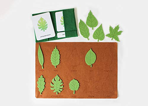 Types of Leaves Felt Mat, 3-Part Cards, Montessori Botany