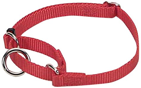 Adjustable No! Slip Martingale Collar, 3/8""