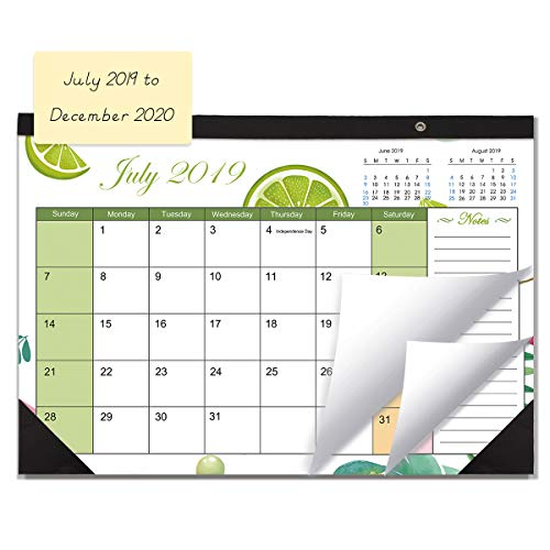 Desk Calendar 2019-2020 Monthly Large Wall Calendar Planner with Plastic Cover, 11.5 X 17
