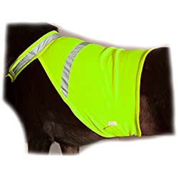 2PET Dog Hunting Vest and Safety Reflective Vest - Used for High Visibility - Protects Pets from Cars & Hunting Accidents in Both Urban and Rural Environments - Small Beaming Yellow