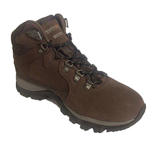 Borderline Boot Brown Ladies Mid Regatta Walking IY6xOqww5